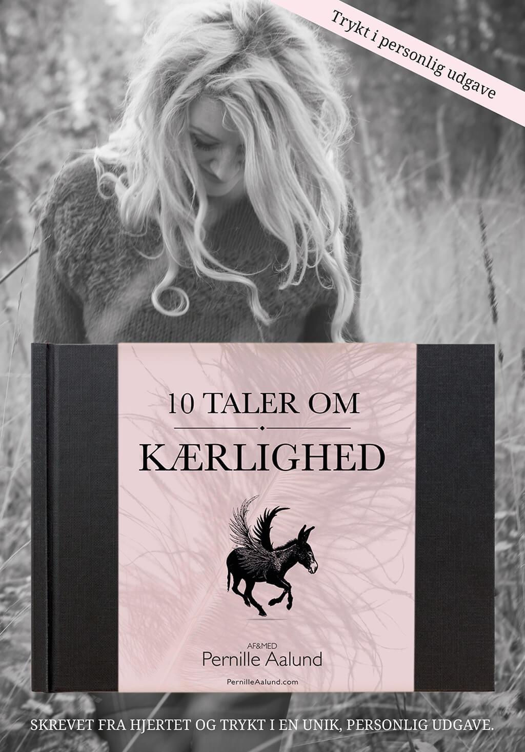 10 taler om Kærlighed, bog forside